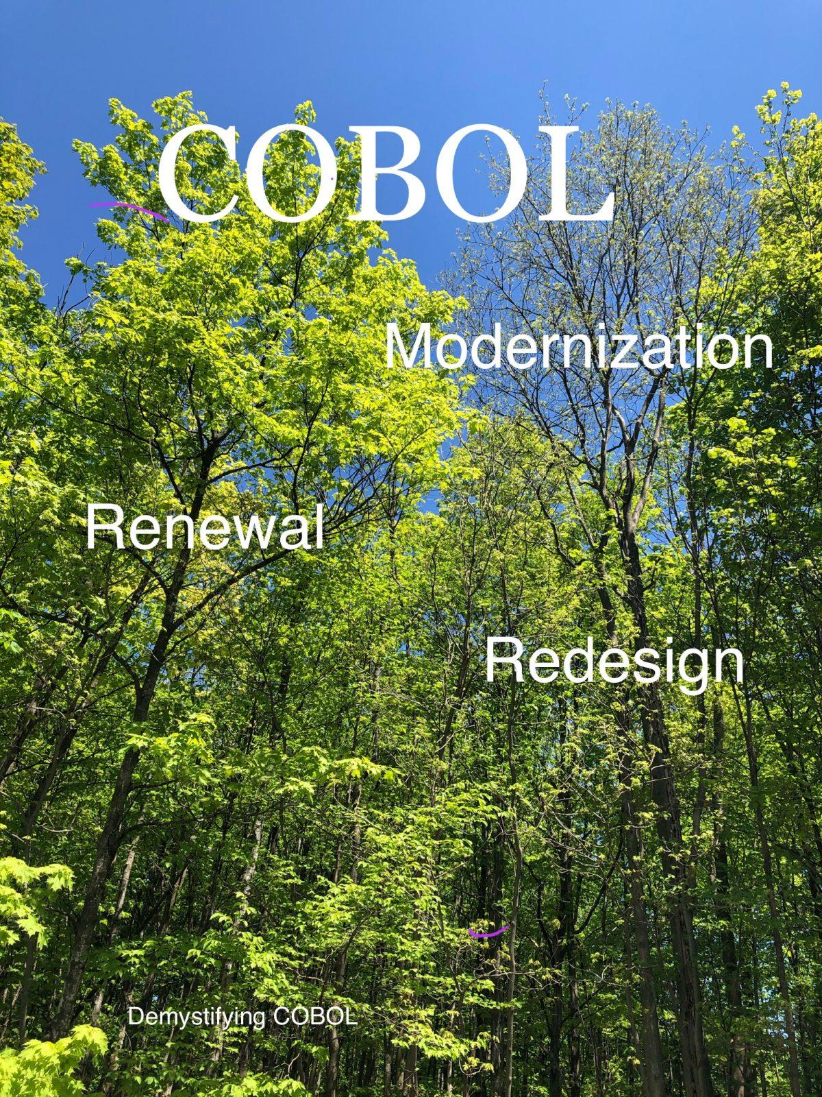 Modernization, Redesign, Renewal–A Revamp of a Legacy COBOL System
